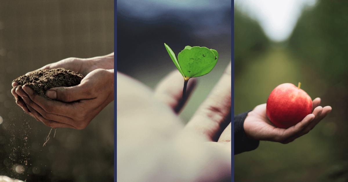 Nachhaltige Innovation